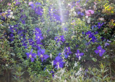 jardins près de rouen